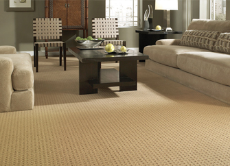 Shop our Featured Infinity Ultra Soft by Creative Elegance flooring in the Online Product Catalog.